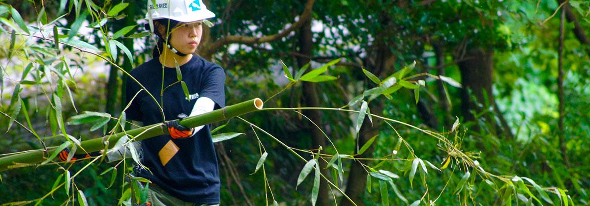 こどもの国竹林整備活動