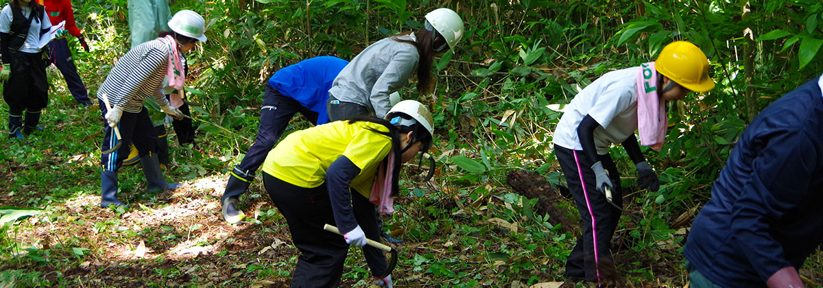 長野県森林整備活動