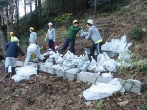 黄金崎の早咲き桜の丘に向かう階段では、土嚢を詰める作業を行いました