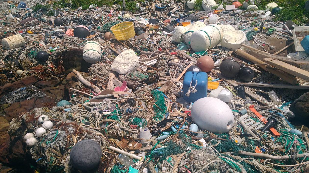 ゴミが散乱した海岸