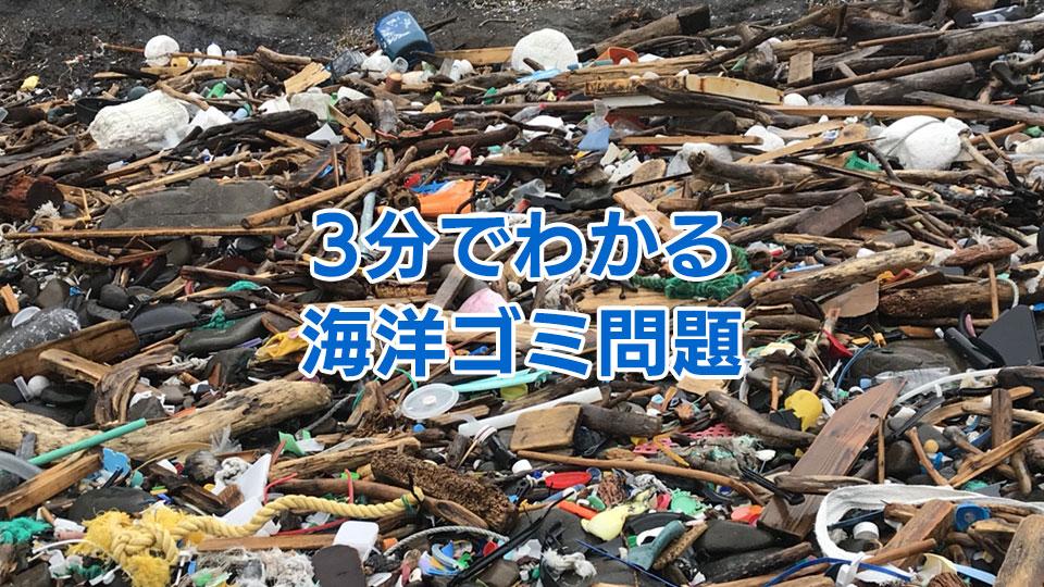 3分でわかる海洋ゴミ問題